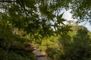 Garten des Okochi Sanso in Kyoto