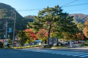 Herbstlaub in Fujikawaguchiko