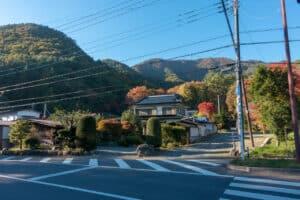 Herbstlaub in der Nähe des Maples Corridor